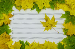 colorful autumn leaves and sheets of paper Stock Photos