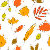 Colorful autumn leaves on white grunge seamless pattern, vector. Background Royalty Free Stock Photo