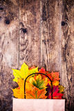 Colorful autumn leaves and wood background. Royalty Free Stock Photo