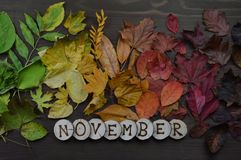 Colorful autumn leaves with word NOVEMBER. Colorful autumn leaves in color gradient on brown wood with the word NOVEMBER in wooden pieces royalty free stock image