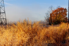 Colorful autumn morning in the Carpathian Ukraine, Europe. Royalty Free Stock Photography