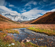 Colorful autumn morning in the Caucasus mountains. Royalty Free Stock Photo
