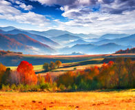 Colorful autumn morning in the mountains. Royalty Free Stock Photography