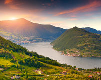 Colorful autumn morning oт the Lake Iseo. Italy, Alps. Stock Images