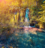 Colorful autumn morning in the Plitvice Lakes National Park. Royalty Free Stock Photography