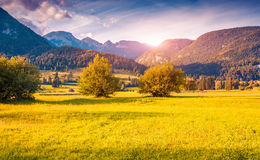 Colorful autumn morning in the Triglav national park Royalty Free Stock Photography
