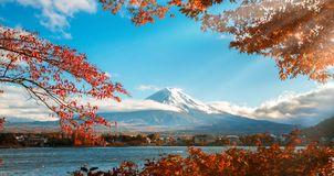 Mount Fuji in Autumn Color, Japan. Colorful Autumn in Mount Fuji, Japan - Lake Kawaguchiko is one of the best places in Japan to enjoy Mount Fuji scenery of Stock Image