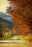 Colorful autumn in the mountains Royalty Free Stock Photo