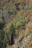 Colorful autumn Nature near Prague, Czech Republic Royalty Free Stock Images