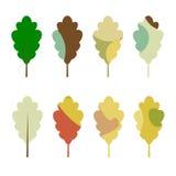Colorful autumn oak leaves set. Isolated on white background royalty free illustration