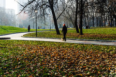 Colorful autumn in october public park Stock Photos