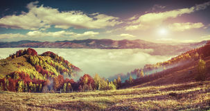 Colorful autumn panorama of the mountains. Royalty Free Stock Images