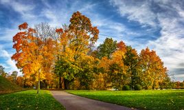 Colorful autumn park in sunny bright day. Beautiful autumn landscape with yellow and red trees. Scenery colored nature. Colorful autumn park in sunny bright day Royalty Free Stock Images