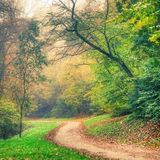 Colorful autumn park trees and road Royalty Free Stock Photos