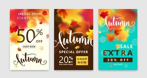 Colorful autumn poster set. Fall sale background with bright maple leaves Royalty Free Stock Image