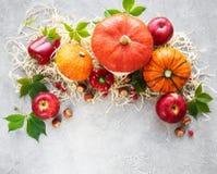 Colorful autumn pumpkins royalty free stock photos