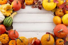 Colorful autumn pumpkins and leaves festive background Royalty Free Stock Photos