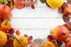 Colorful autumn pumpkins and leaves festive background Stock Photos