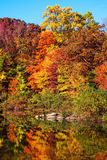 Colorful Autumn Reflections Royalty Free Stock Photo