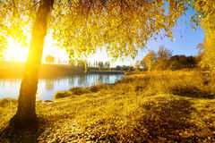 Colorful autumn on river Royalty Free Stock Photos