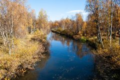 Colorful Autumn River With in Wild Woods. Colorful Autumn River With Beautiful Woods in Yellow and Orange Color in Urho Kekonnen National Park, Finland stock image