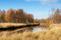 Colorful Autumn River With in Wild Woods. Colorful Autumn River With Beautiful Woods in Yellow and Orange Color in Urho Kekonnen National Park, Finland stock photo