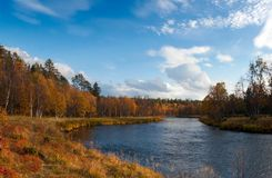 Colorful Autumn River With in Wild Woods. Colorful Autumn River With Beautiful Woods in Yellow and Orange Color in Urho Kekonnen National Park, Finland royalty free stock image
