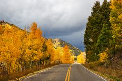 Autumn road. Colorful Autumn scene on countryside road in the sunny morning stock photo