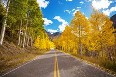 Autumn road. Colorful Autumn scene on countryside road in the sunny morning royalty free stock photography