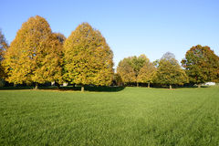 Colorful autumn scene in a park Stock Images