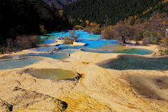 The colorful autumn scenery of Huanglong national park Royalty Free Stock Photography