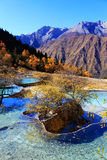The colorful autumn scenery of Huanglong national park Stock Photo