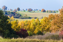Colorful Autumn Scenery. Autumn landscape in Mecklenburg-Vorpommern with blue sky, meadows, colorful bushes and trees Stock Photo