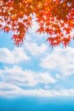 Colorful autumn season & Mountain Fuji in morning fog and red leaves at lake Kawaguchiko, JapanMountain Fuji with colorful red. Colorful autumn season & Mountain stock photography