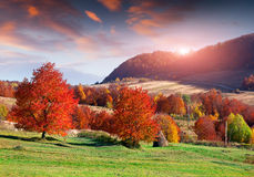 Colorful autumn sunrise in mountain village Stock Photography