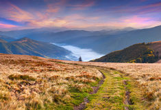 Colorful autumn sunrise in the mountains. Stock Images