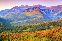 Colorful autumn sunrise in the Utah mountains. stock photos