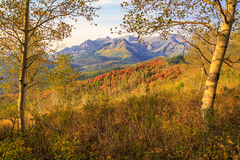 Colorful autumn sunrise in the Utah mountains. Royalty Free Stock Image