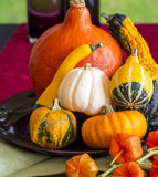 Colorful autumn or Thanksgiving background Stock Photography