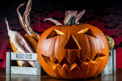 Colorful autumn theme with halloween scary pumpkins Stock Image