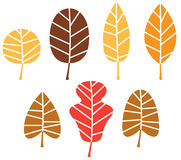Colorful autumn tree leaves Stock Image