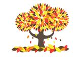 Colorful Autumn tree. Vector illustration Stock Photos
