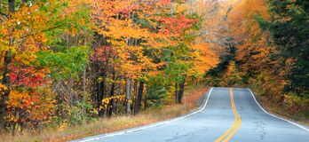 Autumn trees along scenic route in New Hampshire