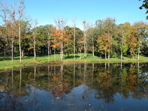 Colorful autumn trees near lake Stock Photography