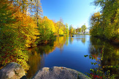 Colorful autumn trees near the river Stock Photography