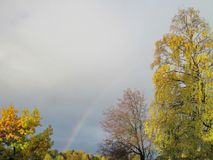 Colorful autumn trees and rainbow , Lithuania Royalty Free Stock Image