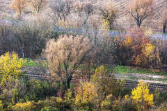 Colorful autumn trees, road and rail Royalty Free Stock Photos