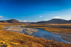 Colorful autumn tundra and river Amguema Arctic Royalty Free Stock Images