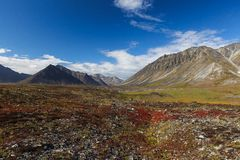 Colorful autumn tundra and river Chukotka, Russia Royalty Free Stock Images