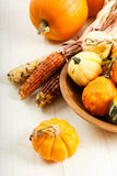 Colorful Autumn Vegetables Royalty Free Stock Photos